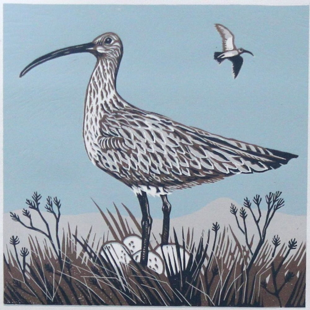 Curlew On Guard by Joanna Martin