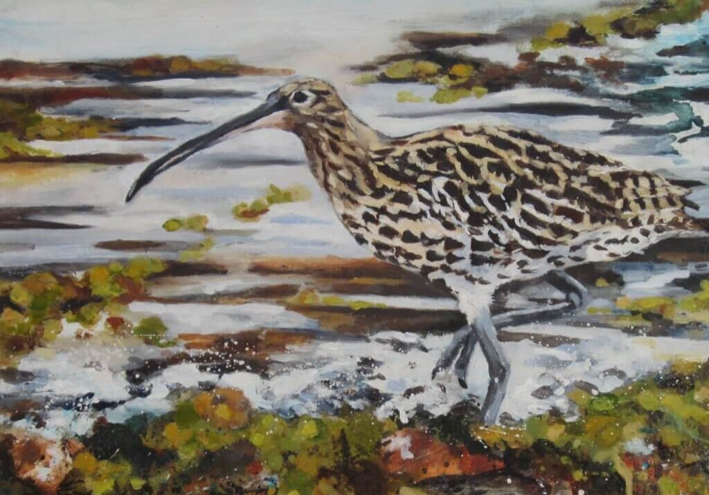 McCurlew- Gemma Waters