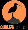 Curlew Action Shop